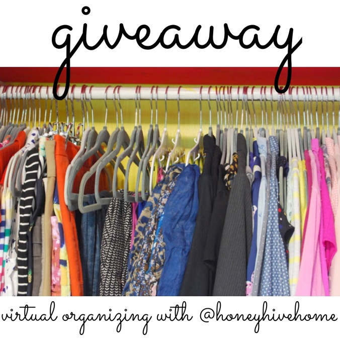 chapel hill professional organizer_virtual organizing giveaway